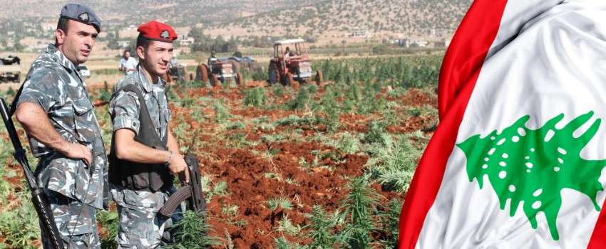 Lebanon is considering marijuana legalization
