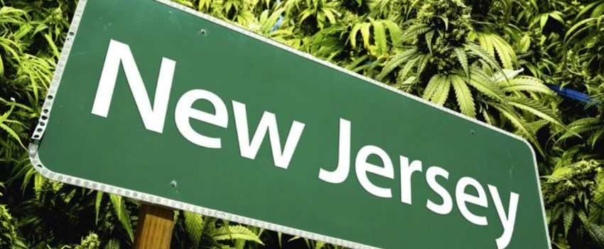 New Jersey Minor Cannabis Offences