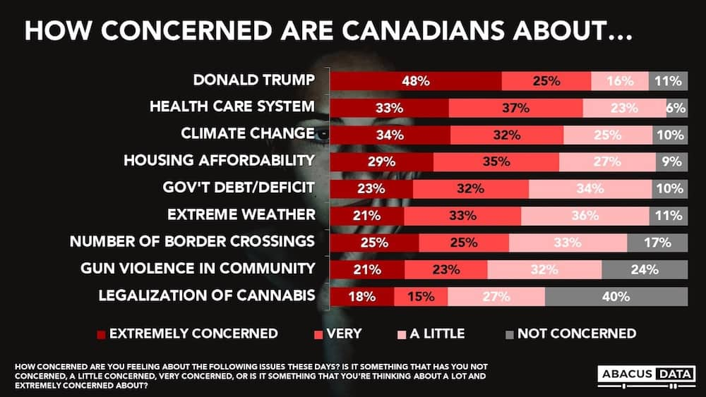 Poll Shows Canadians Are More Concerned About Donald Trump Than Legal Weed