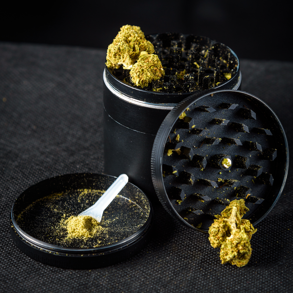 cannabis plant matter in a grinder