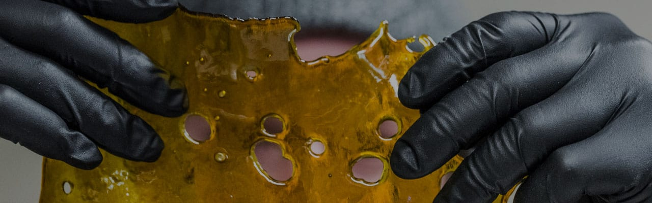 Two gloved hands holding rosin