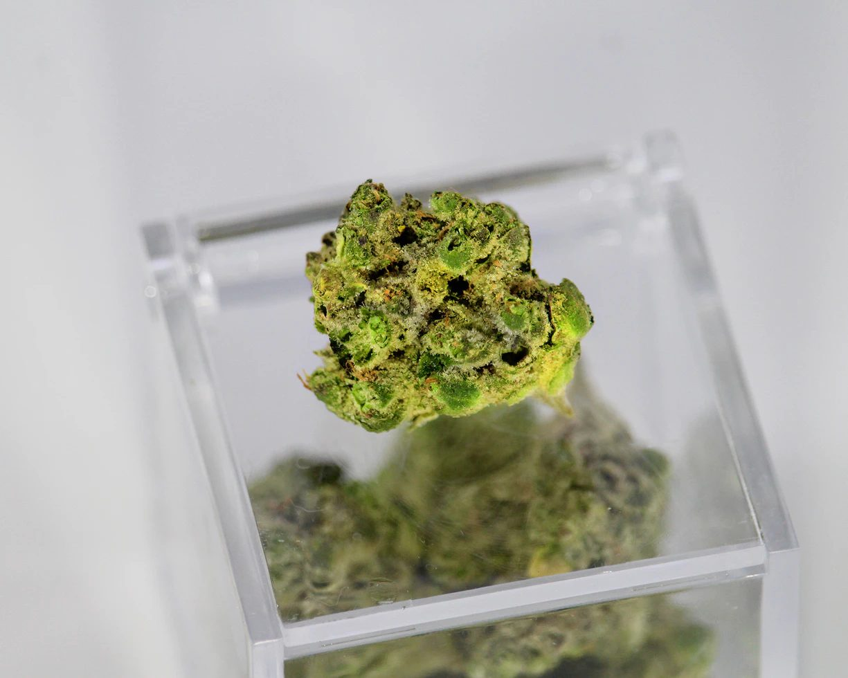 cannabis budder on a glass box