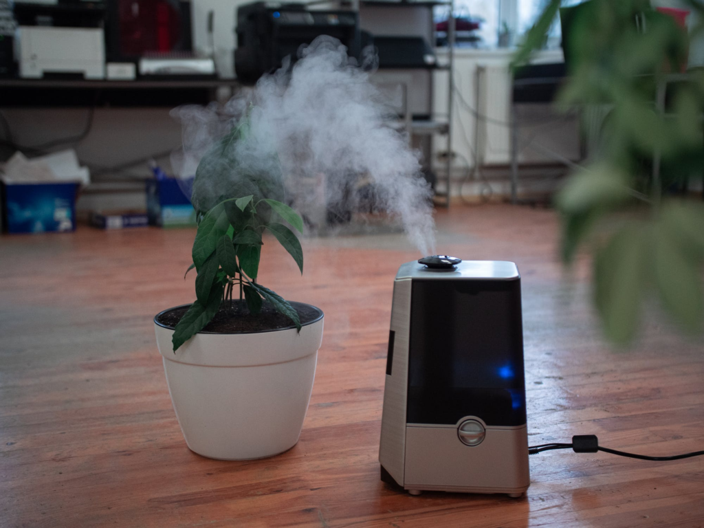 vaporzier in a house next to a plant